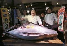 Giant Tuna sells for $632,000 at Tokyo Auction