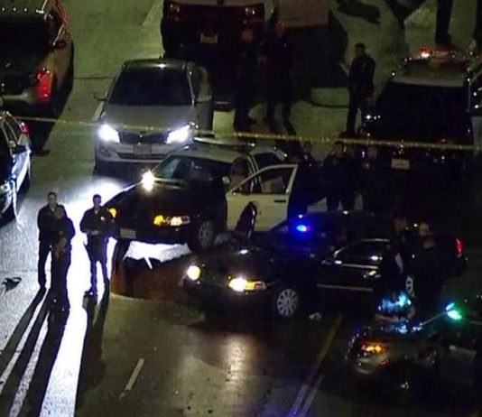 Los Angeles South armed driver shot dead