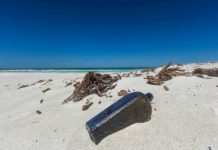 1886 Message in a Bottle is oldest ever found (Picture)