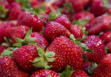 Strawberries recalled over hepatitis A contamination