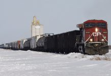 CN and CP both exceed maximum grain revenue limit despite drop in shipments, Report