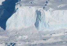 Huge Cavity in Antarctic Glacier Signals Rapid Decay (Reports)