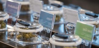 Alberta to lead Canada's legal pot market (Reports)