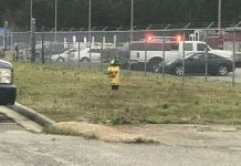 Virginia Naval air station shooting: Sailor injured, shooter killed