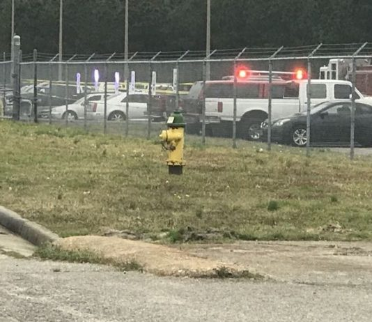 Virginia Naval air station shooting: Sailor injured, shooter killed
