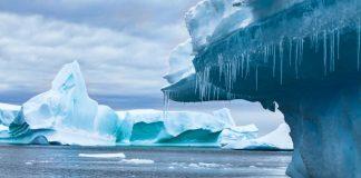 Antarctica Hits Record-High Temperature, Report