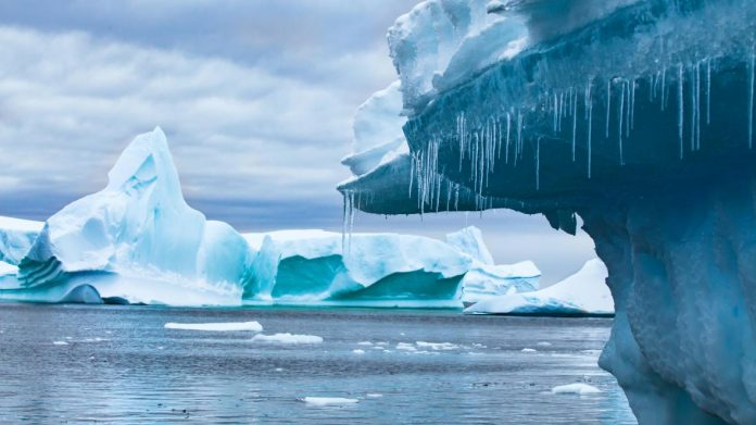 Antarctica Hits Record-High Temperature, Report
