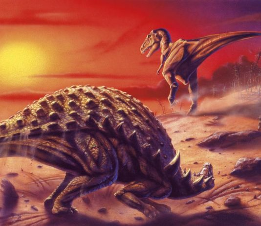 Earth had shorter days when dinosaurs lived, says new research