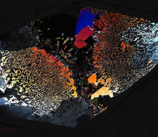Microbial Life Has Been Found Deep in Earth's Crust, According to Study