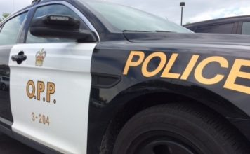 Ontario social distancing fines: Torontonians face up to $100K