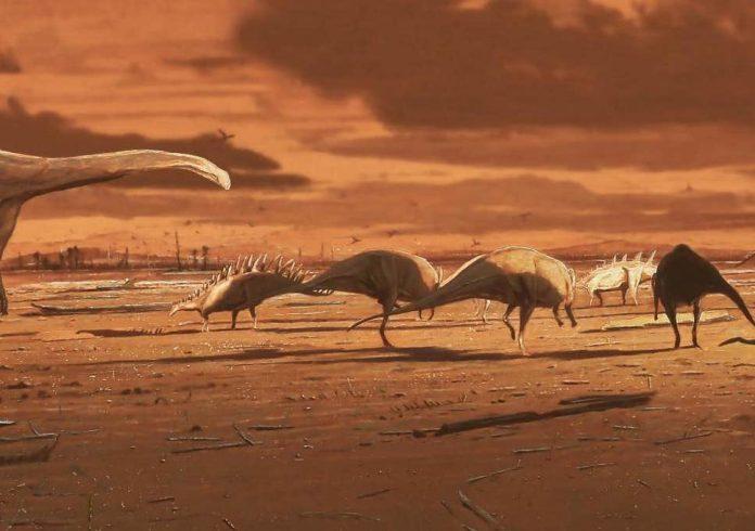 Stegosaurus footprints found on Isle of Skye, Researchers Say