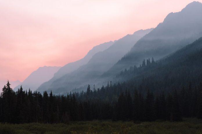 University of B.C. study warns wildfire smoke could make Coronavirus symptoms worse