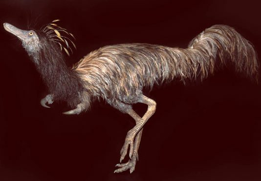 Alvarezsaurids prairiensis: New Species of Hook-Handed Dinosaur discovered