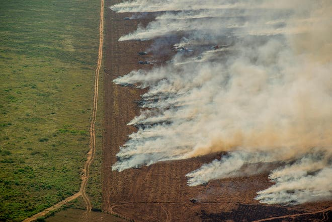 Amazon photos show 'illegal' burning of rainforest, Report