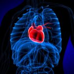 'Broken heart syndrome' rising under stress of pandemic, says new research