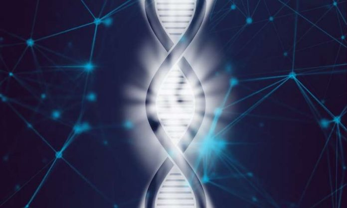 Researchers achieve first complete assembly of human X chromosome