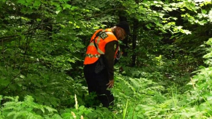 Search for father of girls found dead in Quebec enters sixth day, Report