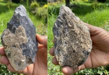 Study: Homo erectus hand ax found in East Africa