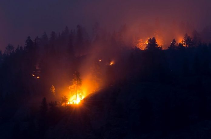 Fire guards could be 'challenged' by forecast winds, Report