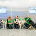 Finland: Virus-sniffing dogs start work at Helsinki Airport