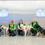 Finland: Virus-sniffing dogs start work at Helsinki Airport