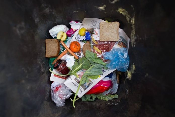 Food waste increasing as more Canadians eat at home, Report