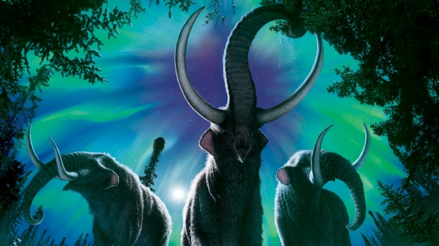 Mastodon migrations north offer clues about today's animal movements, says new research
