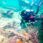 Mexican researchers identify the first Mayan slave ship