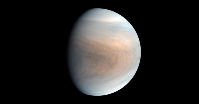 Moscow proclaims Venus a