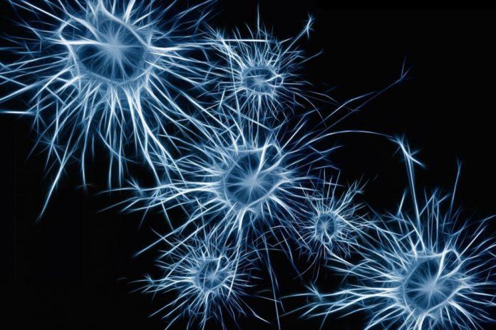 Investigational ALS drug AMX0035 slows progression (Study)