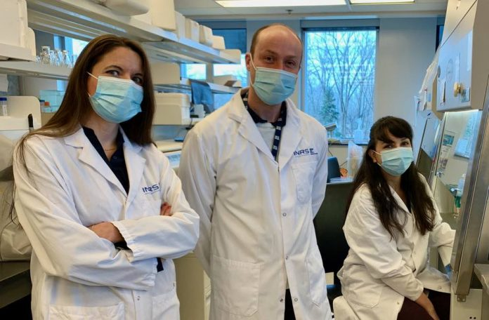 Quebec research institute might have found new molecule to fight gonorrhea and meningitis, Report