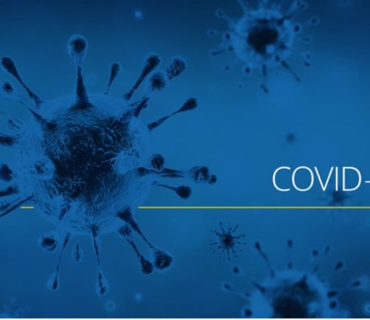 Coronavirus: Quebec reports more than 900 new COVID-19 cases again, five more deaths