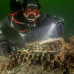 Nazi Enigma cipher machine found in Baltic Sea (Picture)