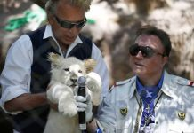 Illusionist Siegfried Fischbacher, of the duo Siegfried & Roy, dies aged 81