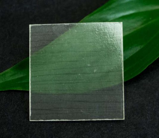 Researchers develop transparent wood that is stronger and lighter than glass