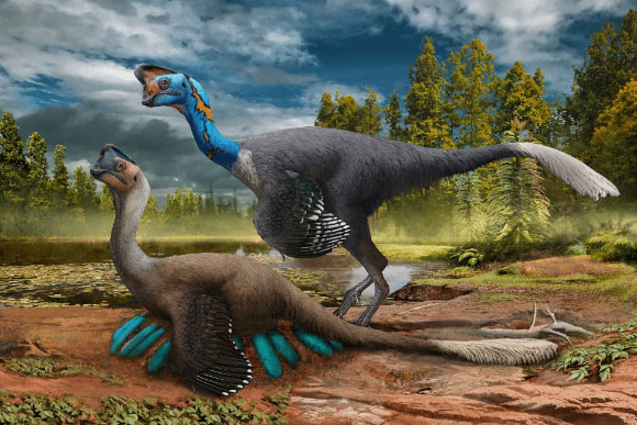 Researchers find rare fossil of dinosaur sitting on eggs with embryos inside