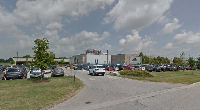 Coronavirus: Cargill plant shuts down amid COVID-19 outbreak
