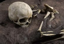 Archaeologists find Africa's oldest human burial, a child from 78,000 years ago