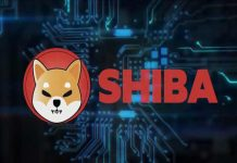 Shiba inu coin price prediction: SHIB value to double if Dogecoin killer 'overcomes indecision'