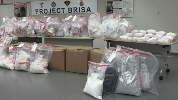 T.O. police seize $61M worth of drugs in international drug-smuggling ring case