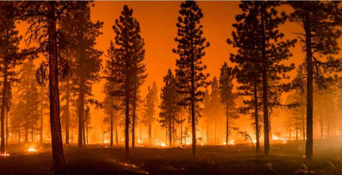 Ontario: There are nearly 200 active wildfires across British Columbia