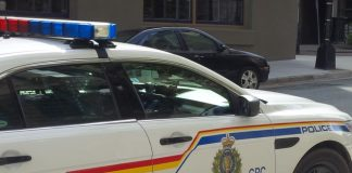 RCMP: Toddler bitten by dog at a day home requires 80 stitches