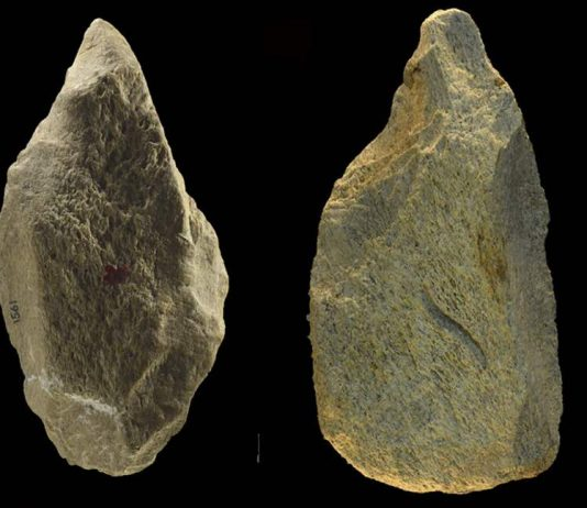 400,000-Year-Old Bone Tools Identified in Italy, archaeologists say